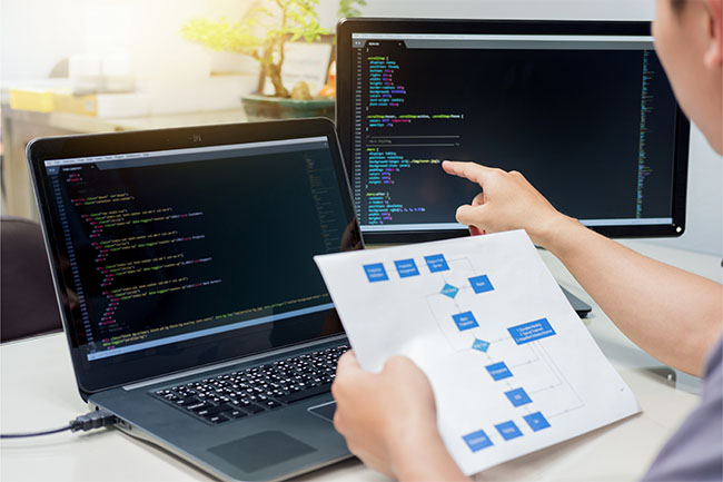 What you need to know to develop a web application from scratch