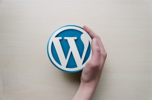 SEO promotion of a website on WordPress: what is important to set up?