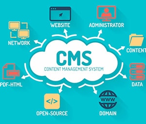 How to determine the CMS of the site