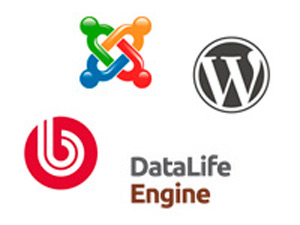 Review of popular content management systems (CMS).  Part 1